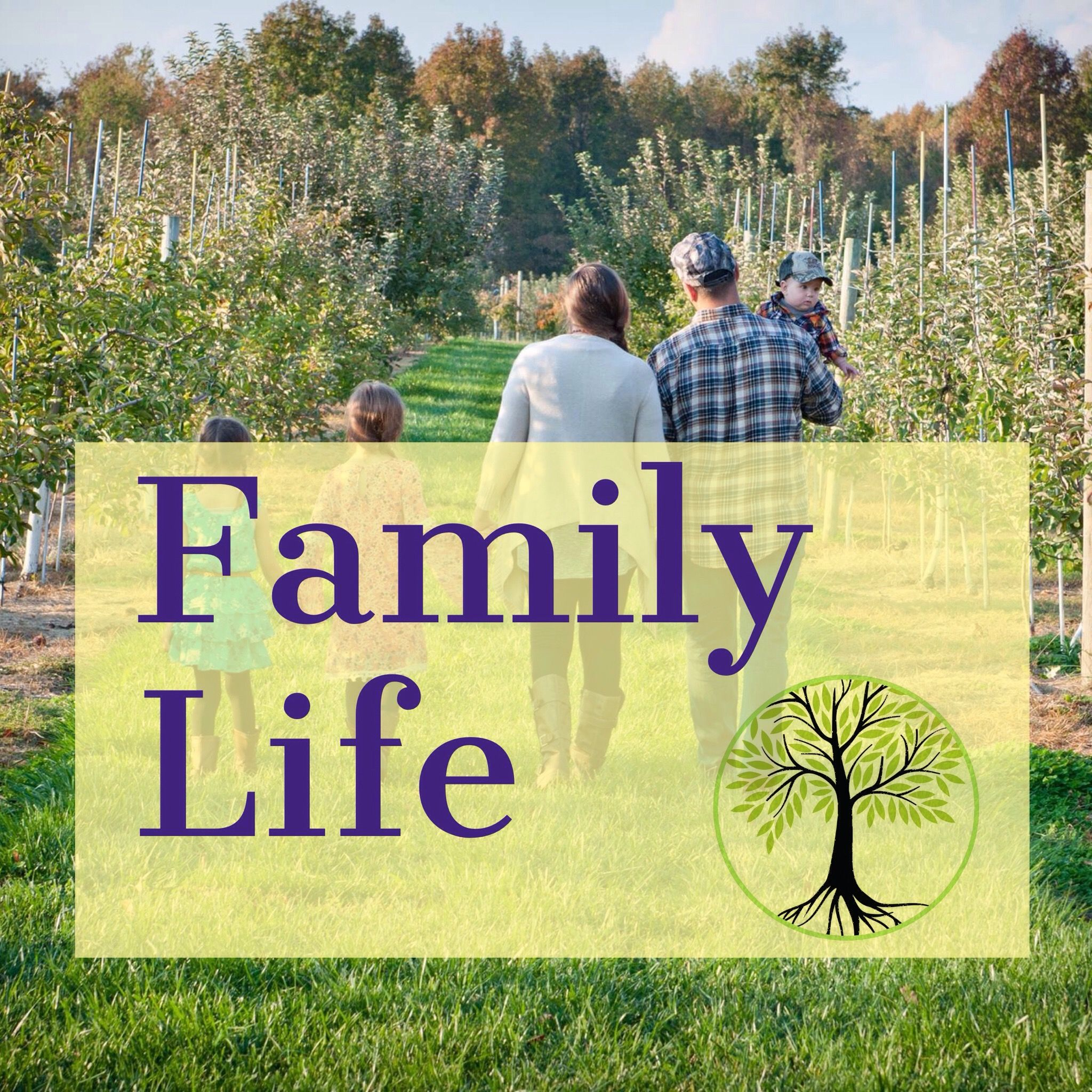 Family Life Image By Lil Olive Tree