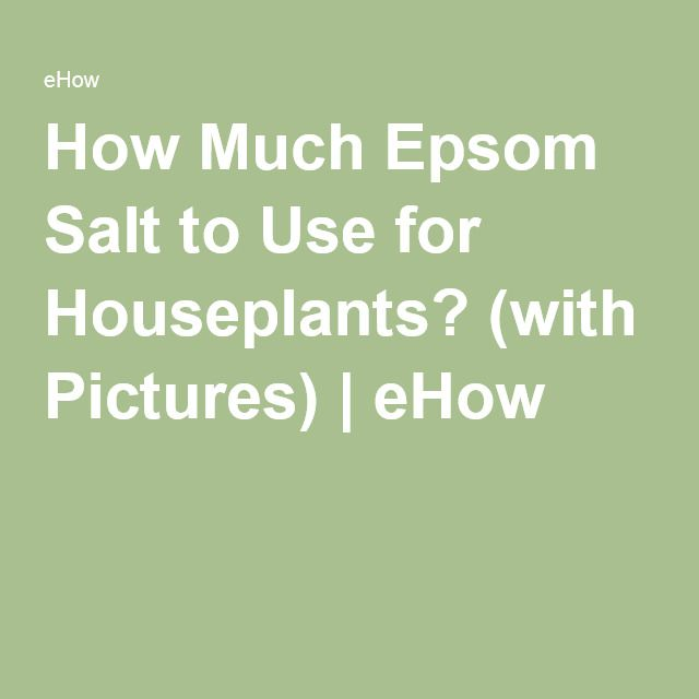 How Much Epsom Salt To Use For Houseplants