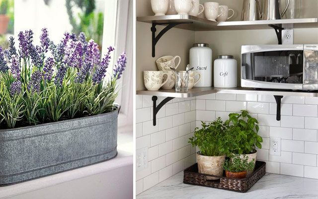 ideas originales para decorar la cocina con plantas deco