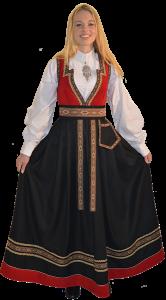 Photo of Bilde av Dame Party-kostyme