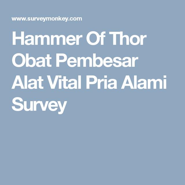 hammer of thor obat pembesar alat vital pria alami survey obat