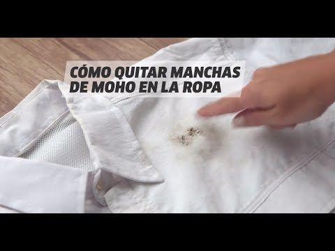 Como Quitar Las Manchas De Moho Best Latest Cheap Quitar Moho Ropa