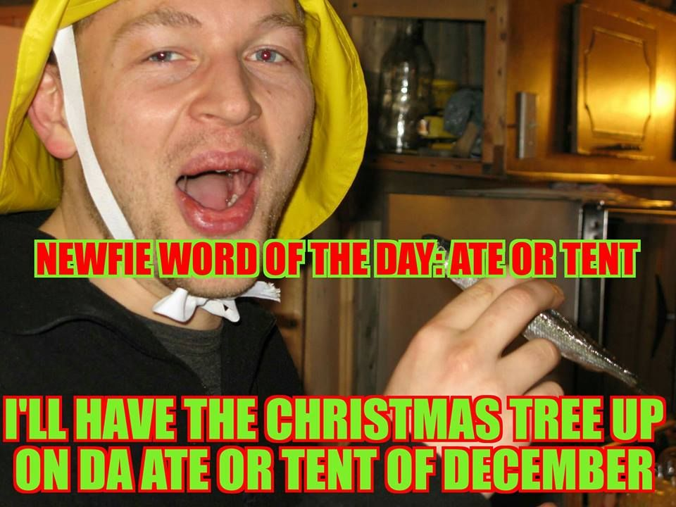 Pin On Newfie Words Of The Day