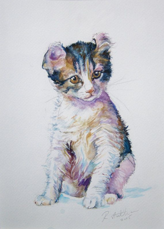 Cat Painting Original Watercolor Scottish Fold Kitten Scottish