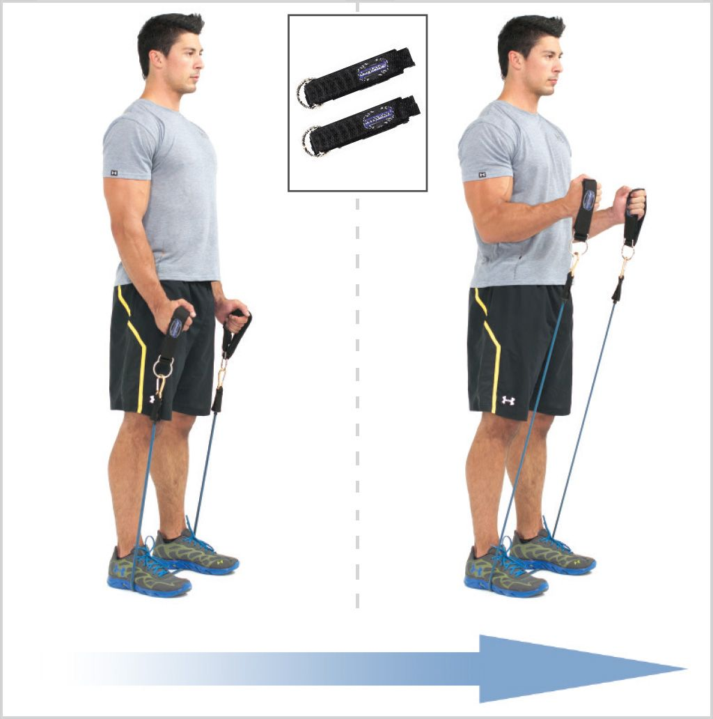 Image result for Band Biceps Curls resistance band
