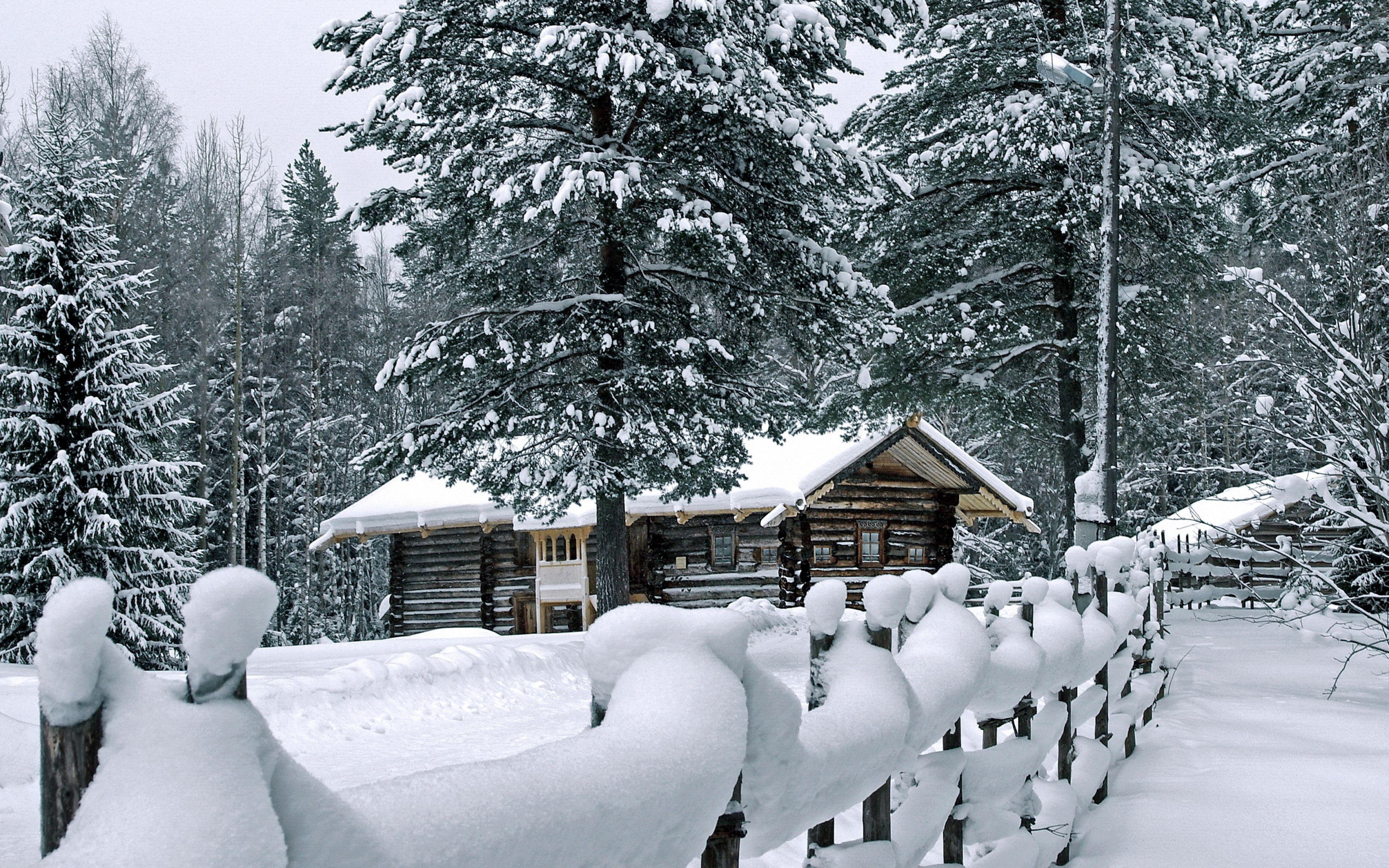 3840x2400 Wallpaper Fence Snow Snowdrifts Attire Pines House Log Hut