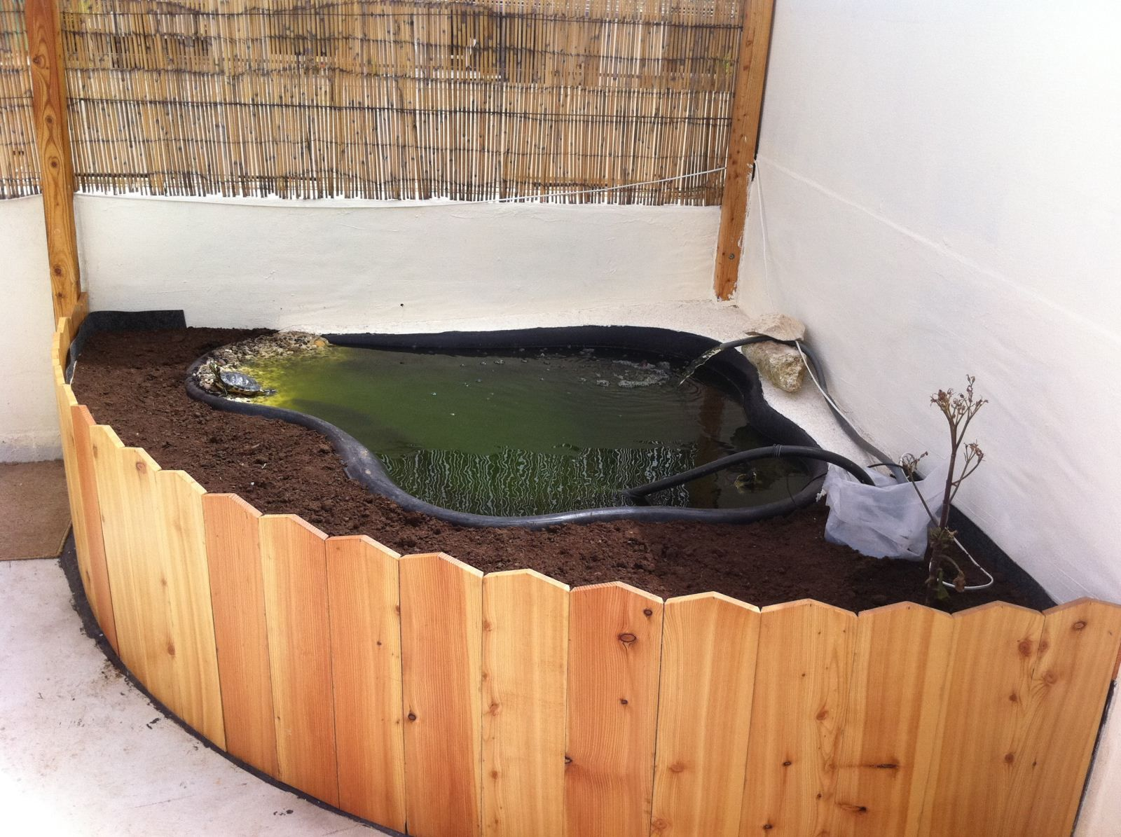 Indoor turtle habitat pinteres Diy indoor turtle pond