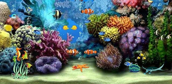 Download Aquarium Live Wallpaper For Pc Free Download Gallery