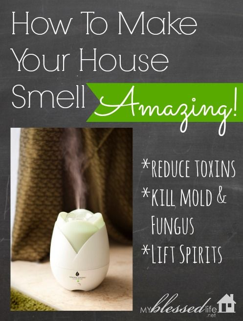 How To Make Your House Smell Amazing | MyBlessedLife.net