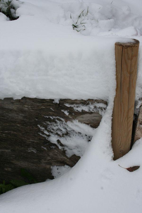 La prima neve nell'orto e a casa