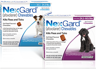 About A Delicious Beef Flavored Chew That Dogs Love Nexgard Afoxolaner Flea And Tick Pet Clinic Dog Love