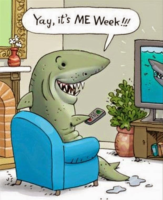 Some Of The Best Things In Life Are Mistakes Shark Week Fun For The Kiddos Funny Cartoons Jokes Sharks Funny Funny Jokes For Kids