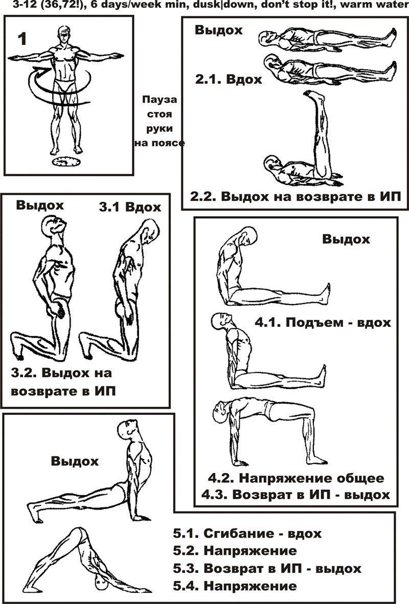 упражнения 5 тибетских жемчужин для похудения
