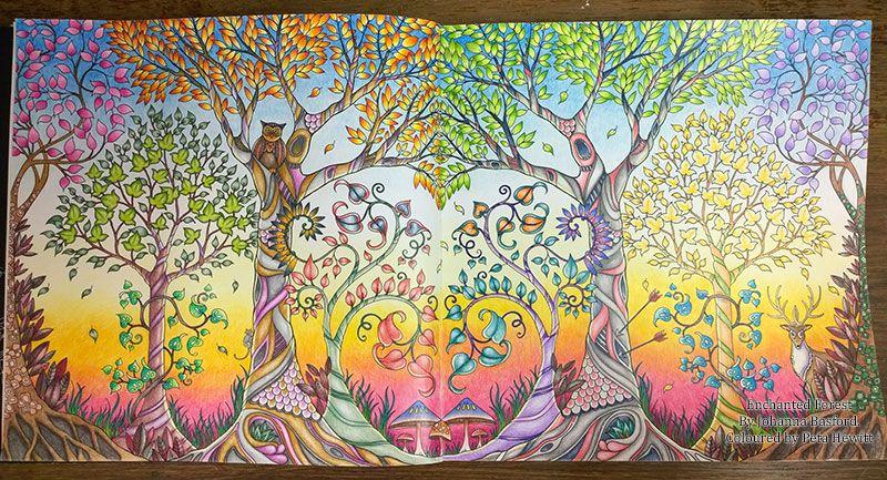 Enchanted Forest La Artistino