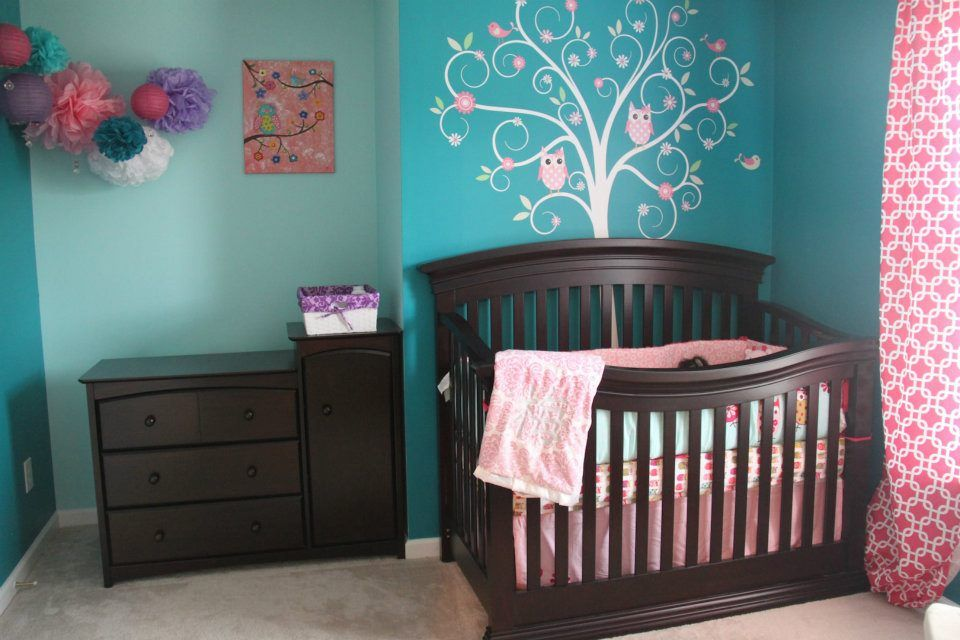Teal And Pink Girls Nursery With Owls Baby Girl Room