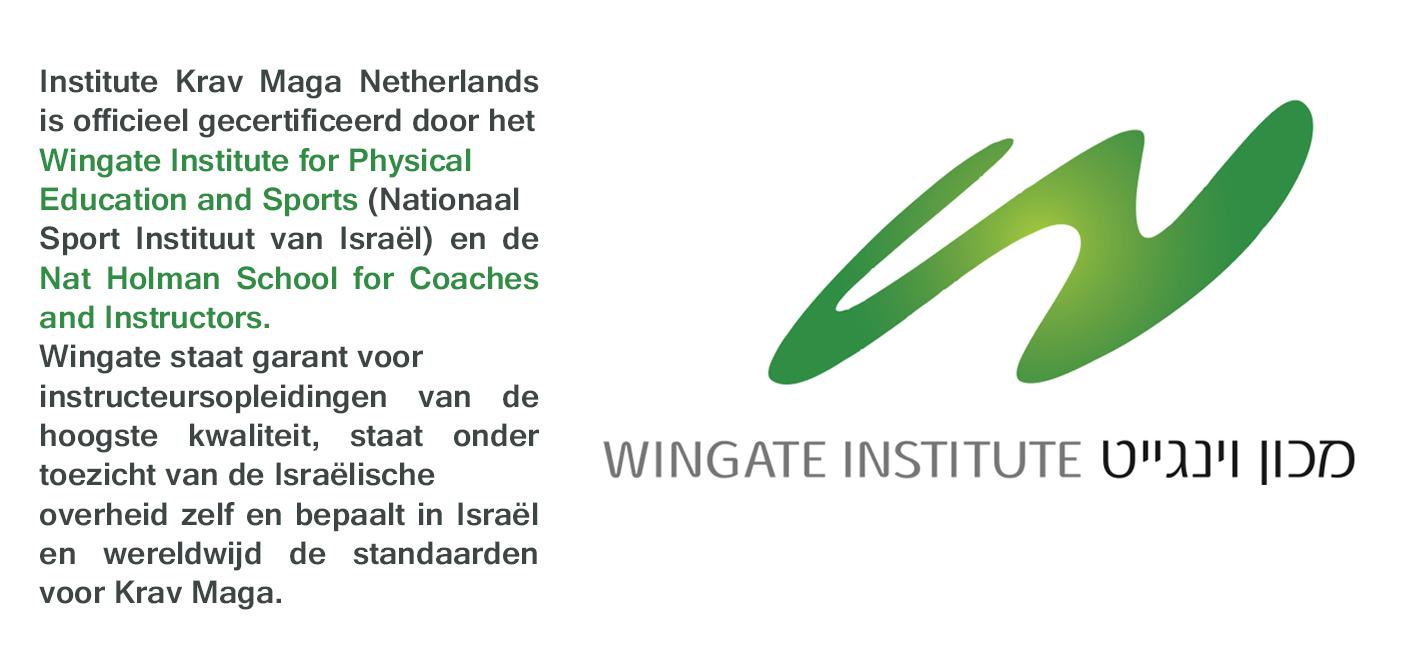 Wingate Certification Krav Maga Pinterest
