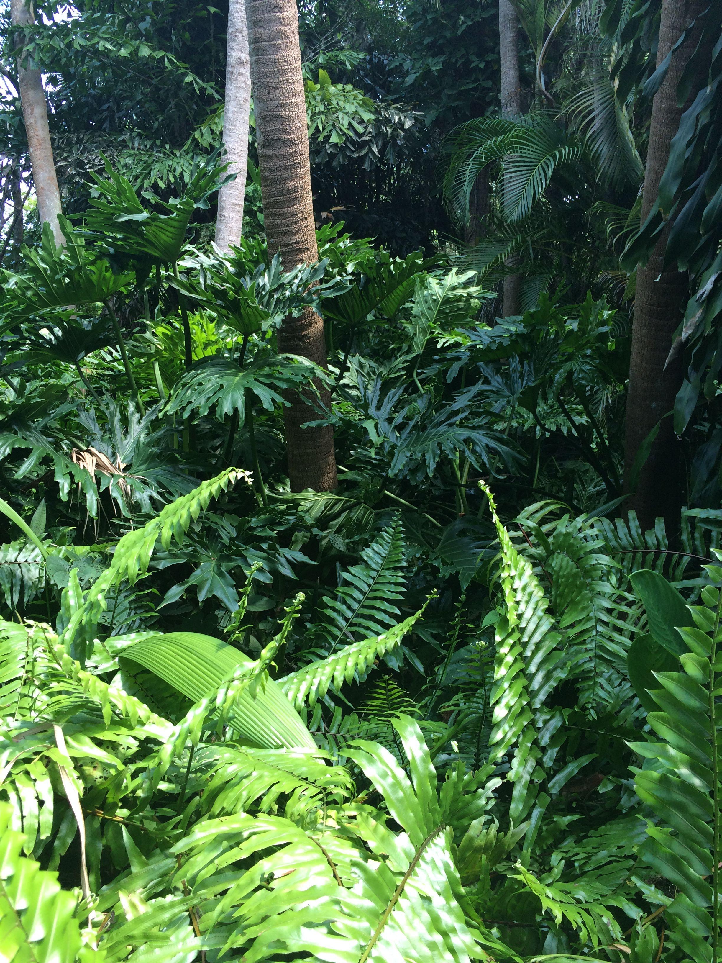 Dschungel badezimmer dekor legoland floridaus garden  photo by gabrielle vernier  enchanted