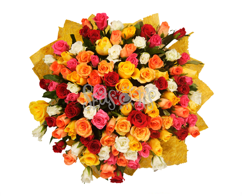 100 Mix Colour Roses Bunch Diwali Gifts Flower Delivery Mothers Day Flowers