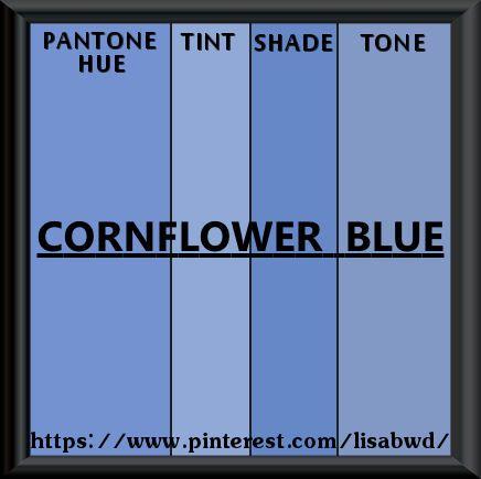pantone seasonal color swatch cornflower blue | my pantone