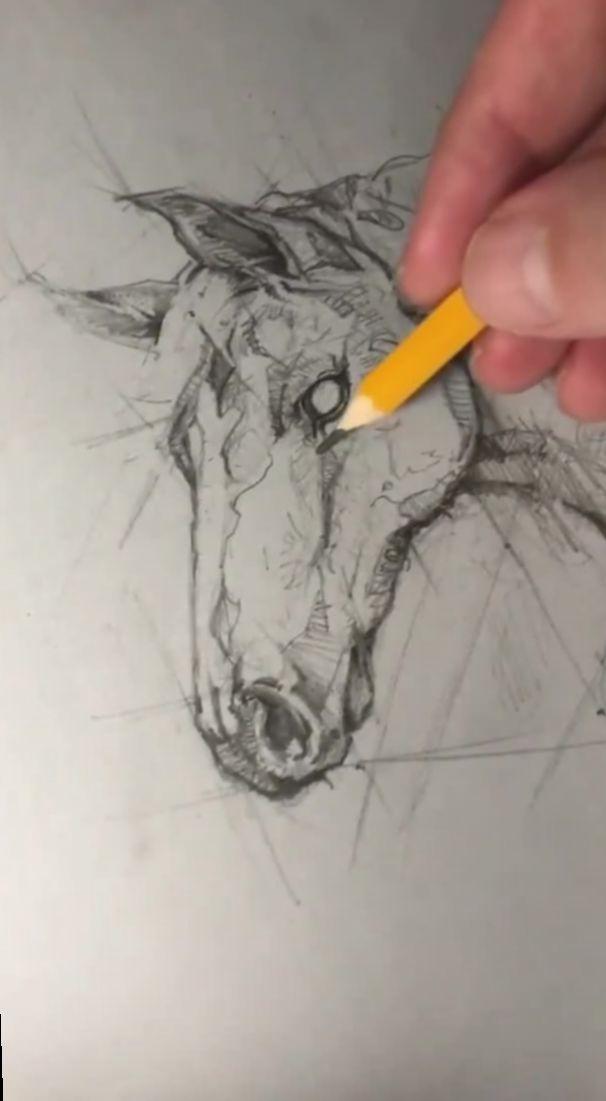 ✔ Drawing Videos Animal Cute #drawingpencil #drawingtime #drawing2me
