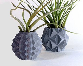 geometric planter variety pack succulent pot plant door MeshCloud