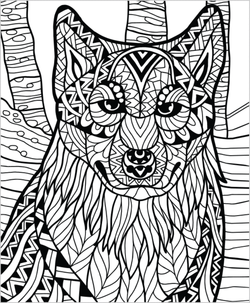 tundra animals coloring pages free printable pictures - 495×600