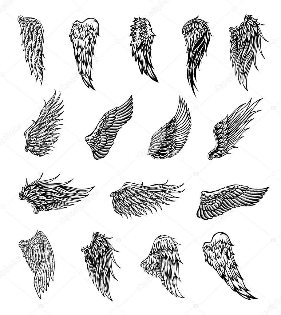 Photo of Ailes héraldiques définies pour la conception de tatouage ou de mascotte, graphiques vectoriels …