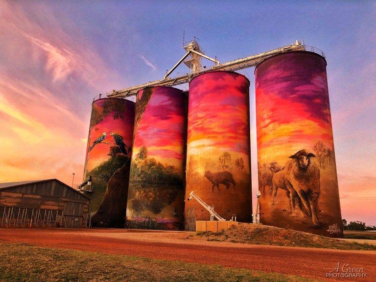 Silo Art Trail - Australia's number one must do road trip - Great  Australian Adventure | Street art, Art, Street artists