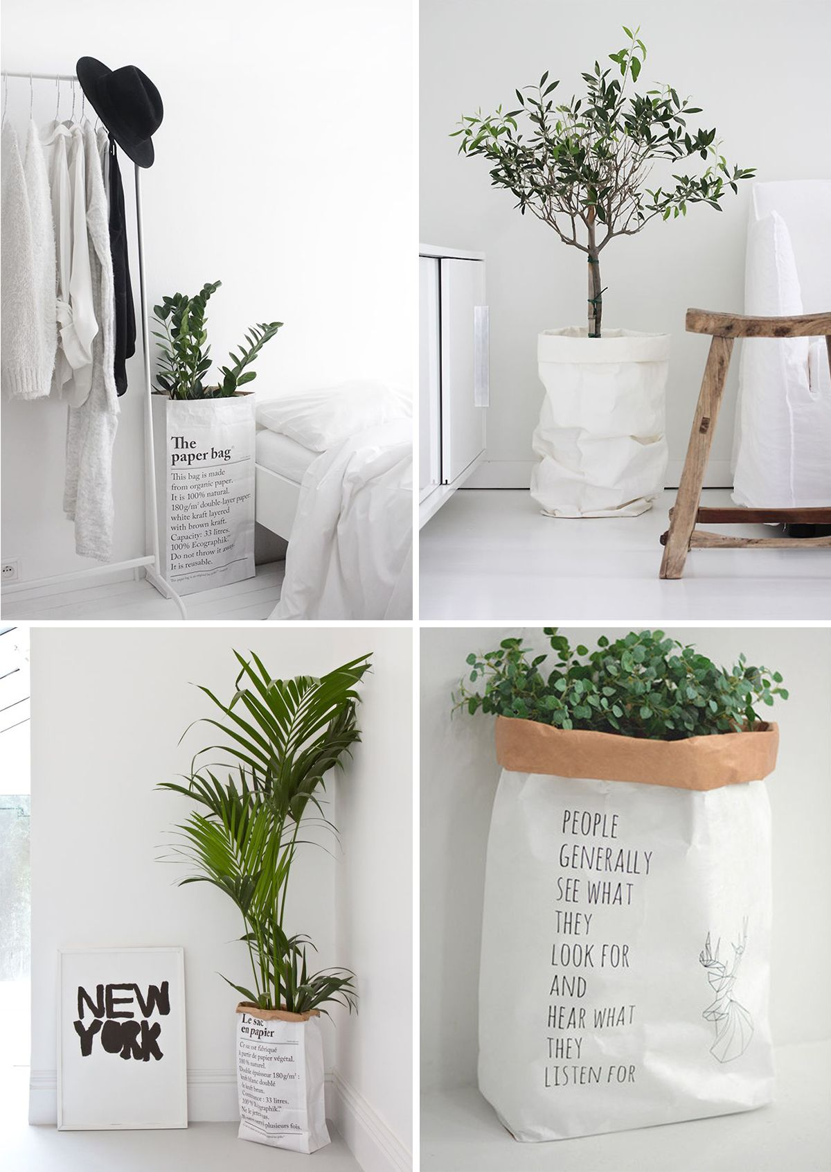 4 sac papier plantes elephantintheroom mur vegetal sac en papier deco plantes et d co maison. Black Bedroom Furniture Sets. Home Design Ideas