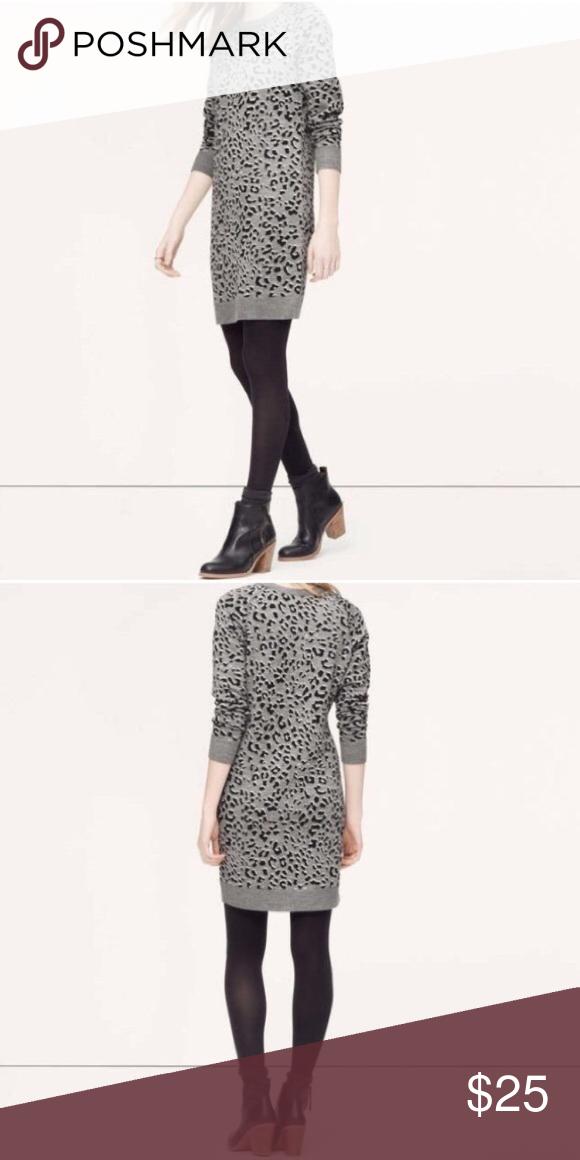 3170c4956b1 Cheetah print sweater dress Brand new never worn only tried on LOFT Dresses  Mini