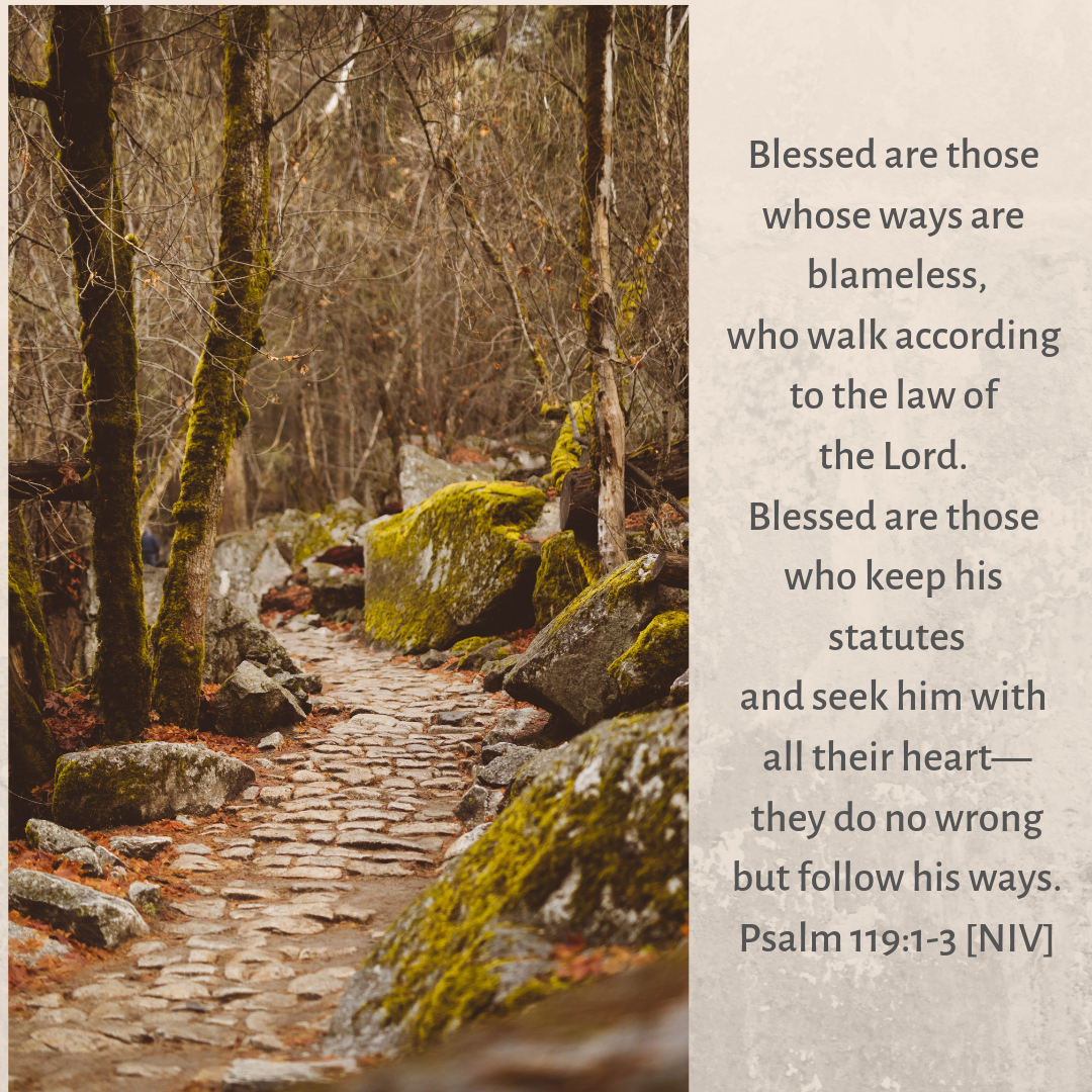 Blessed Are Those Who Seek The Lord Blessed Are Those Seek The Lord Psalm 119