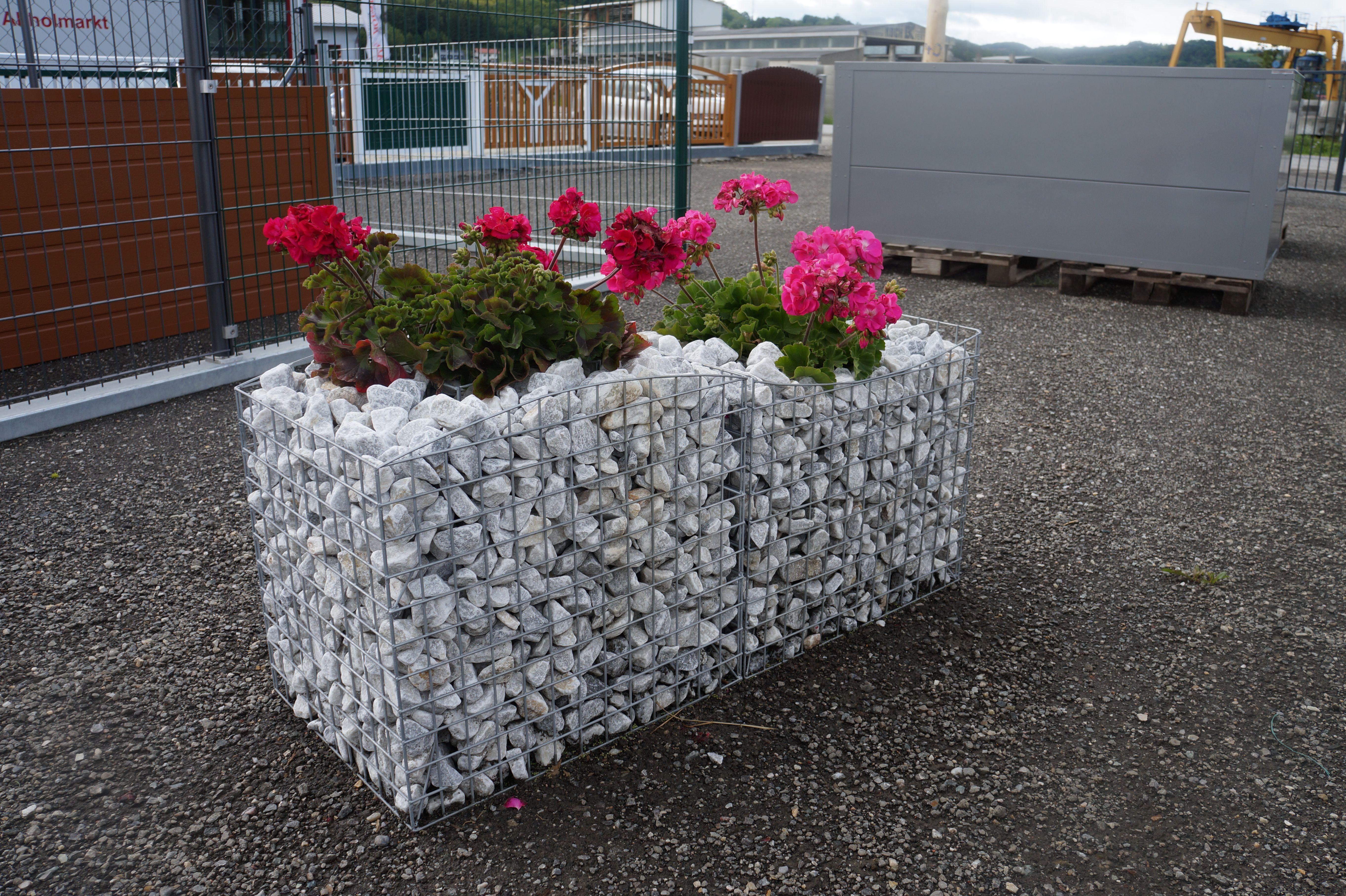Blumen Gabione Garten Rund Ums Haus Blumen