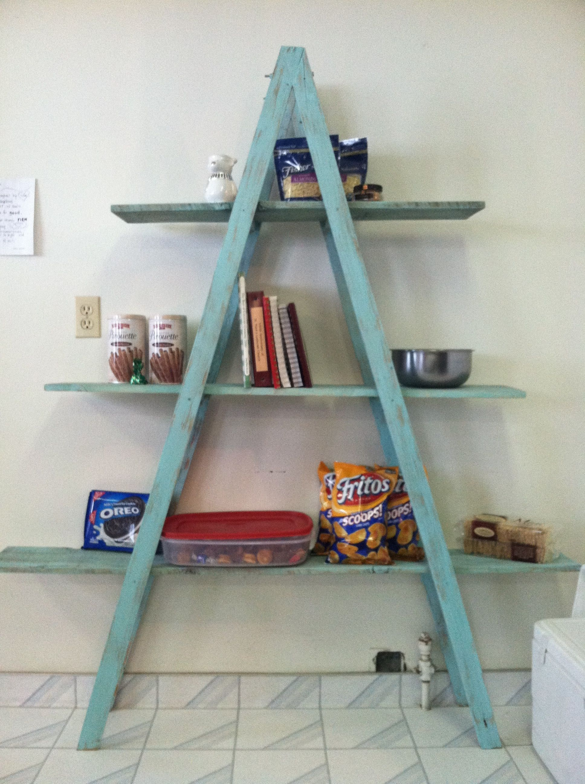 Make A Shelf Out Of A Ladder Could Turn 2 Ladders Sideways Connect With Longer Shelves Would Be Cool Ladder Shelf Decor Bookshelves Diy Wooden Ladder Shelf