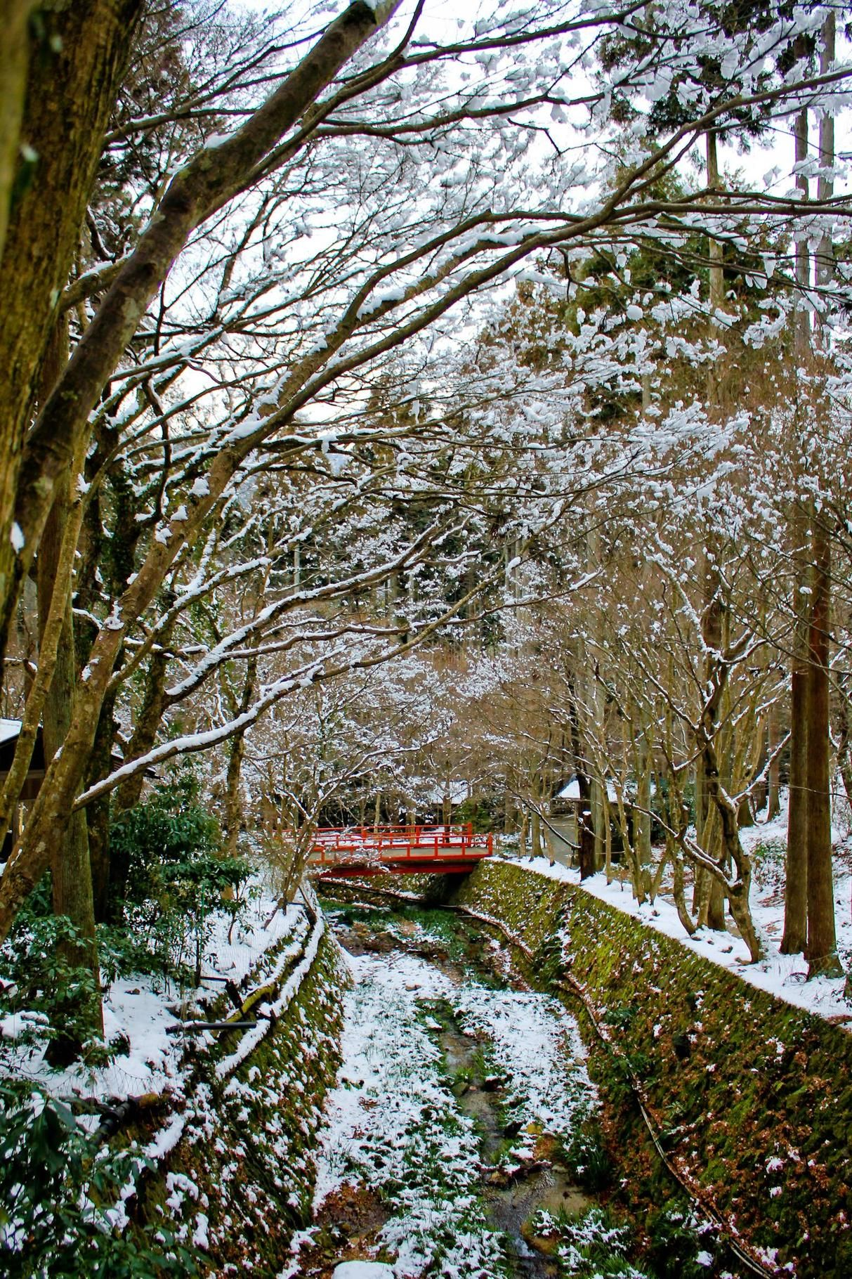 ohara village north of kyoto winter snow shuhekien garden of