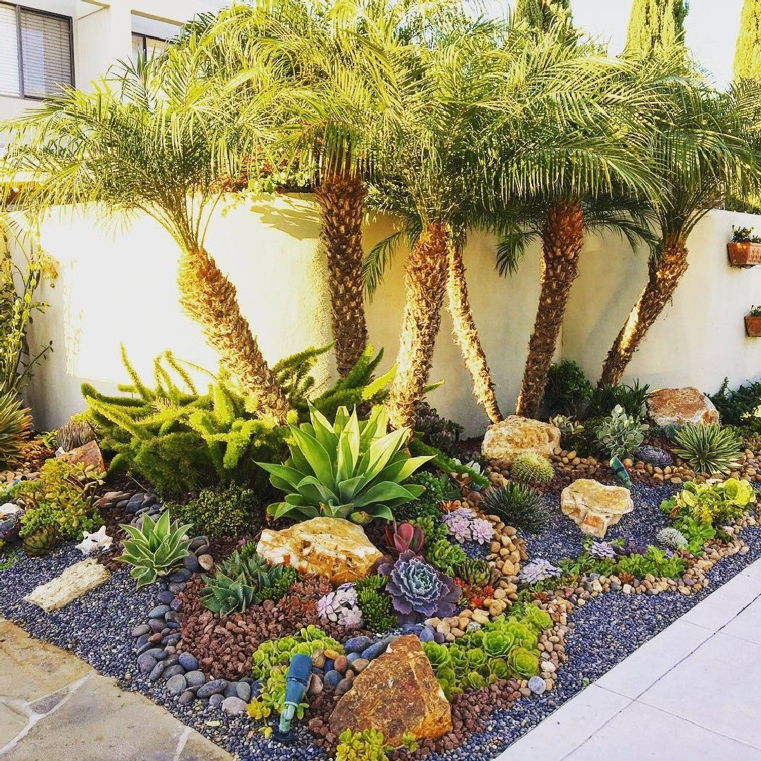 25 Gorgeous Front Yard Garden Landscaping Ideas: Amazing Succulent Front Yard Landscaping Ideas And