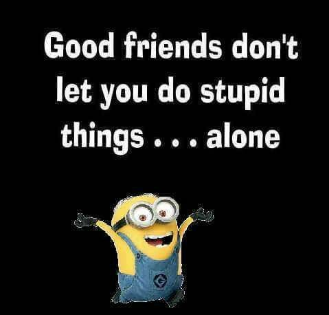Good friends don't let you do stupid things...alone