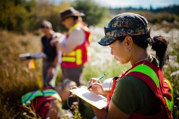 Top  Jobs For Environmental StudiesScience Majors