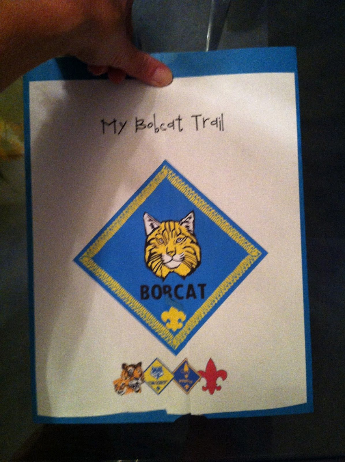 Pin On Cub Scout