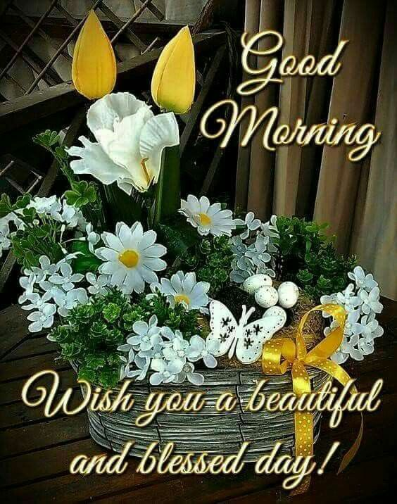 9039 good morning judiann on facebook pinterest morning 9039 good morning m4hsunfo