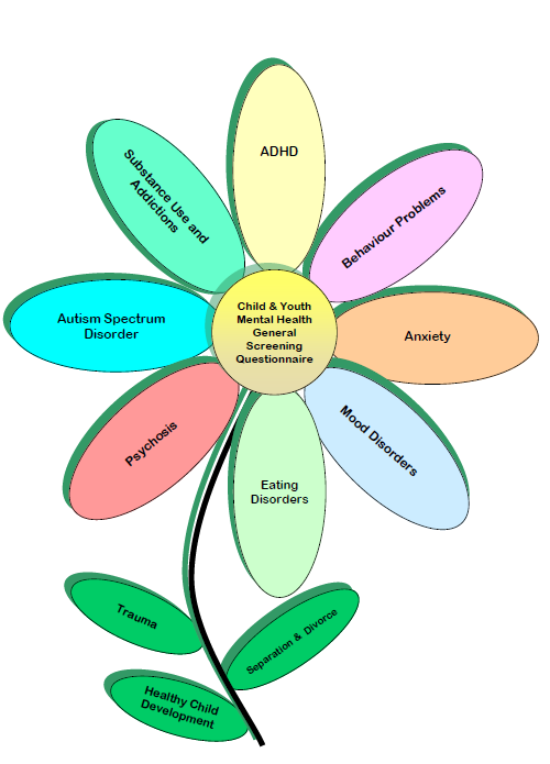 child mental health assessment questionnaire pdf