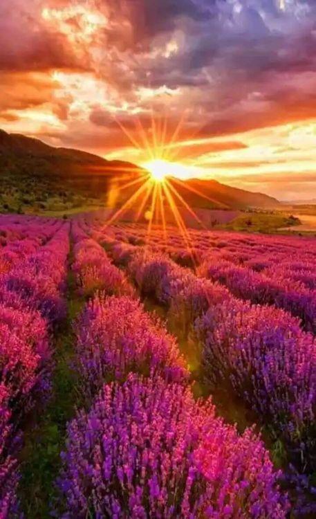 Joni Express Photo Beautiful Landscapes Beautiful Nature Nature Photography