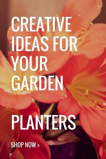 Planters for your Garden Transform greenery into works of art. In this collection find planters  and ideas for the garden     #garden#planters #loveit#ideas#myhome#mygarden #mylook #ShopStyle #shopthelook #BestWayToGetRidOfUnwanted