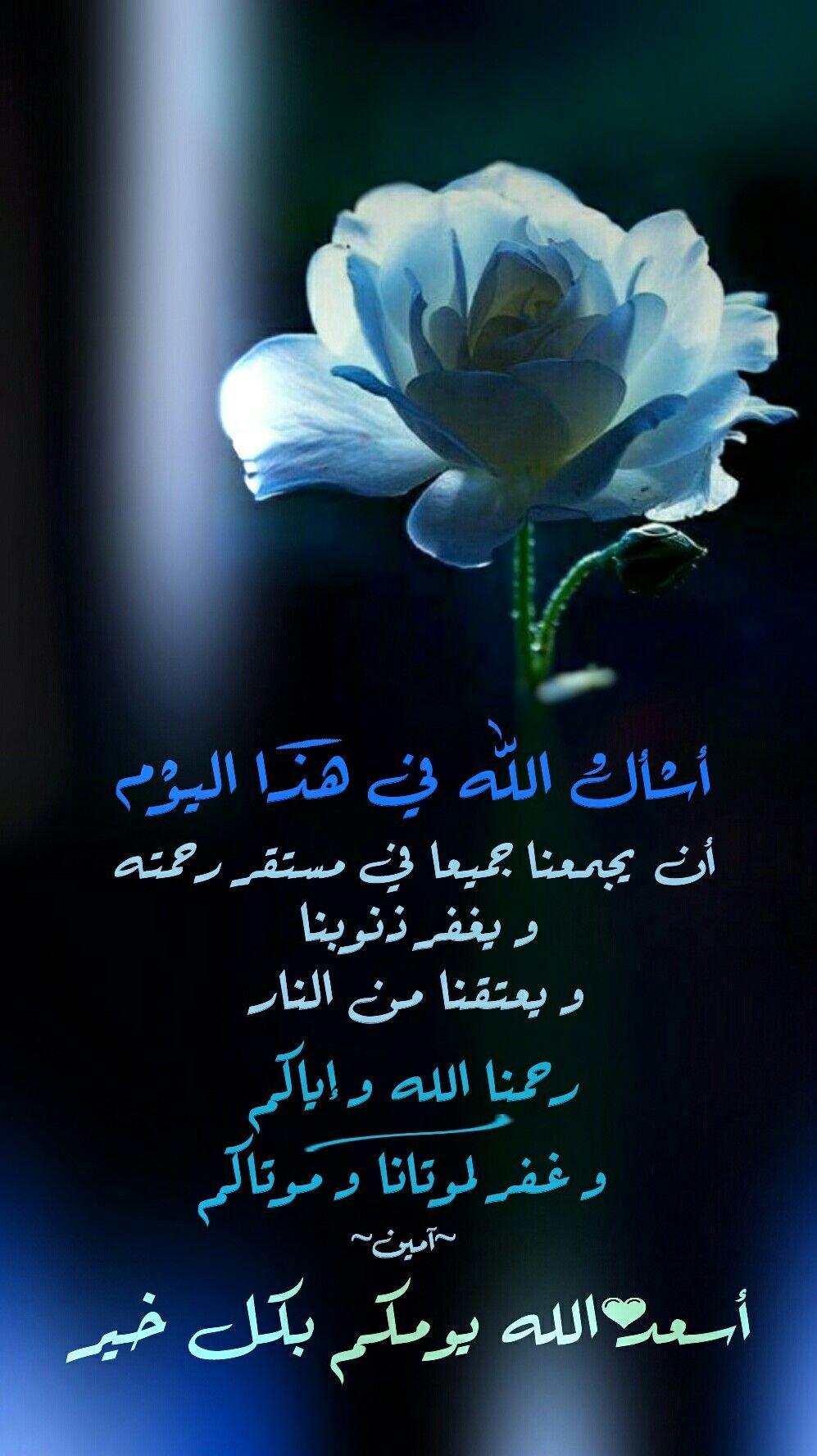 Pin By Yacine Aymen On Cerf Beautiful Morning Messages Morning Messages Good Morning Arabic