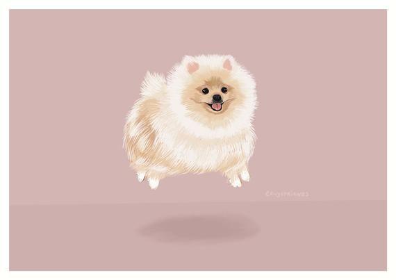 Pomeranian Art Print Pomeranian Illustration Pomeranian Wall Etsy In 2020 Dog Art Illustration Art