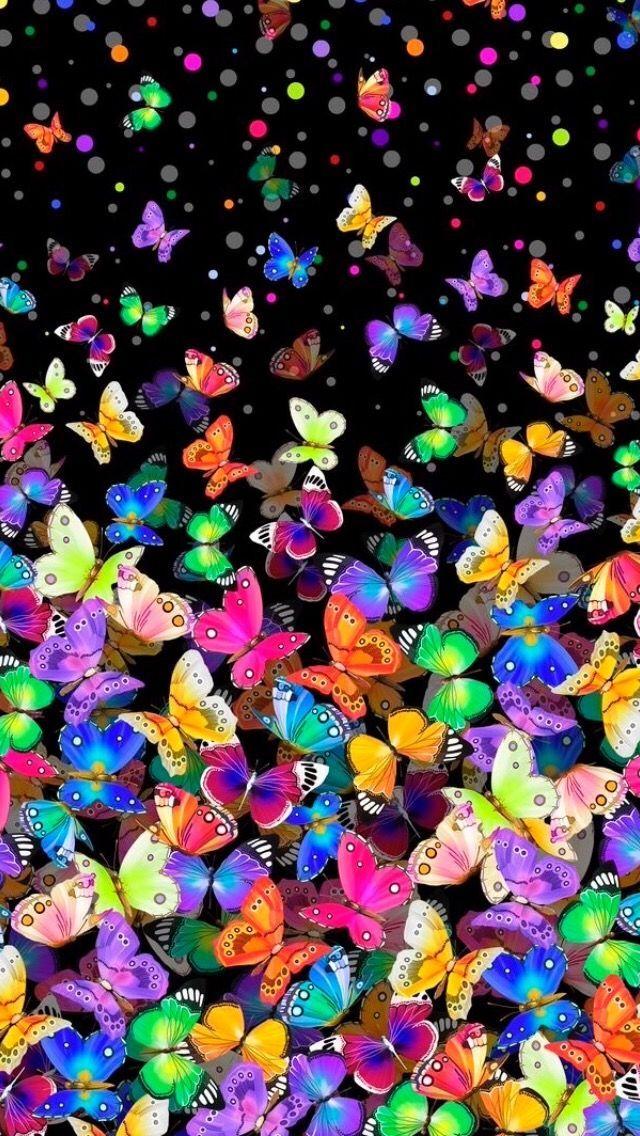Butterflies - Monika