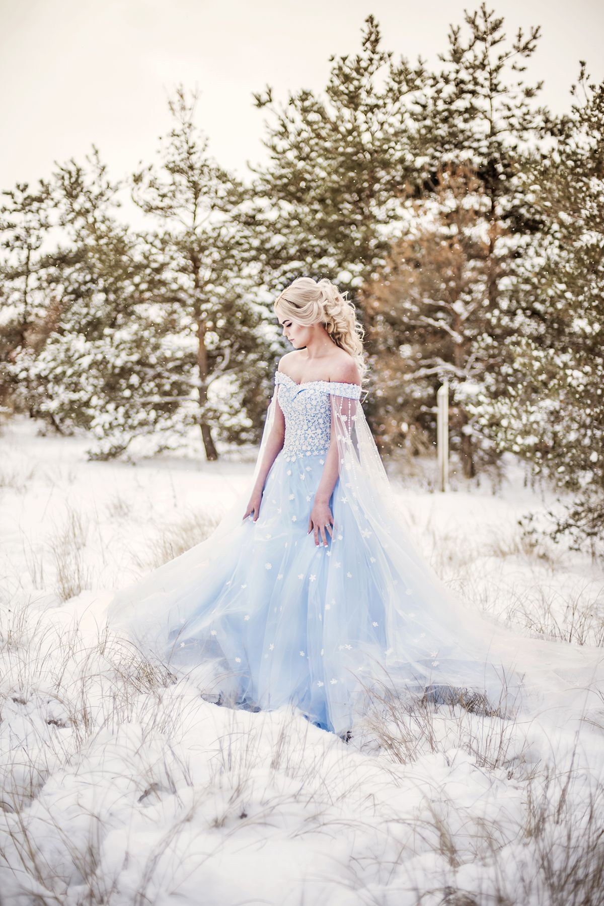 Winter Cinderella wedding ideas | Frozen wedding dress, Frozen