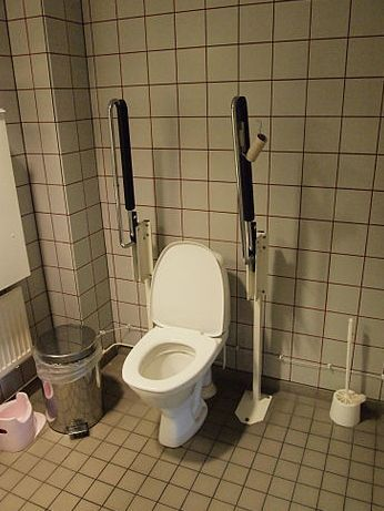 Handicap Toilet Choices for Accessible Living - Tips for Choosing a ...
