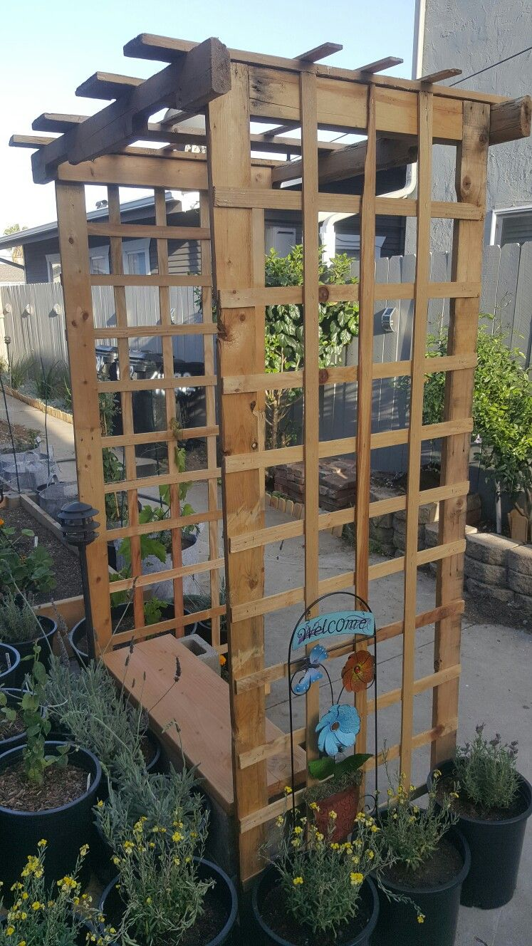 Pallet Grape Arbor we made for our garden using pallets ...