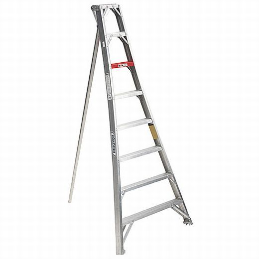 Tree Stuff Stokes Telescoping Orchard Ladder In 2020 Arborist Ladder Platform Ladder