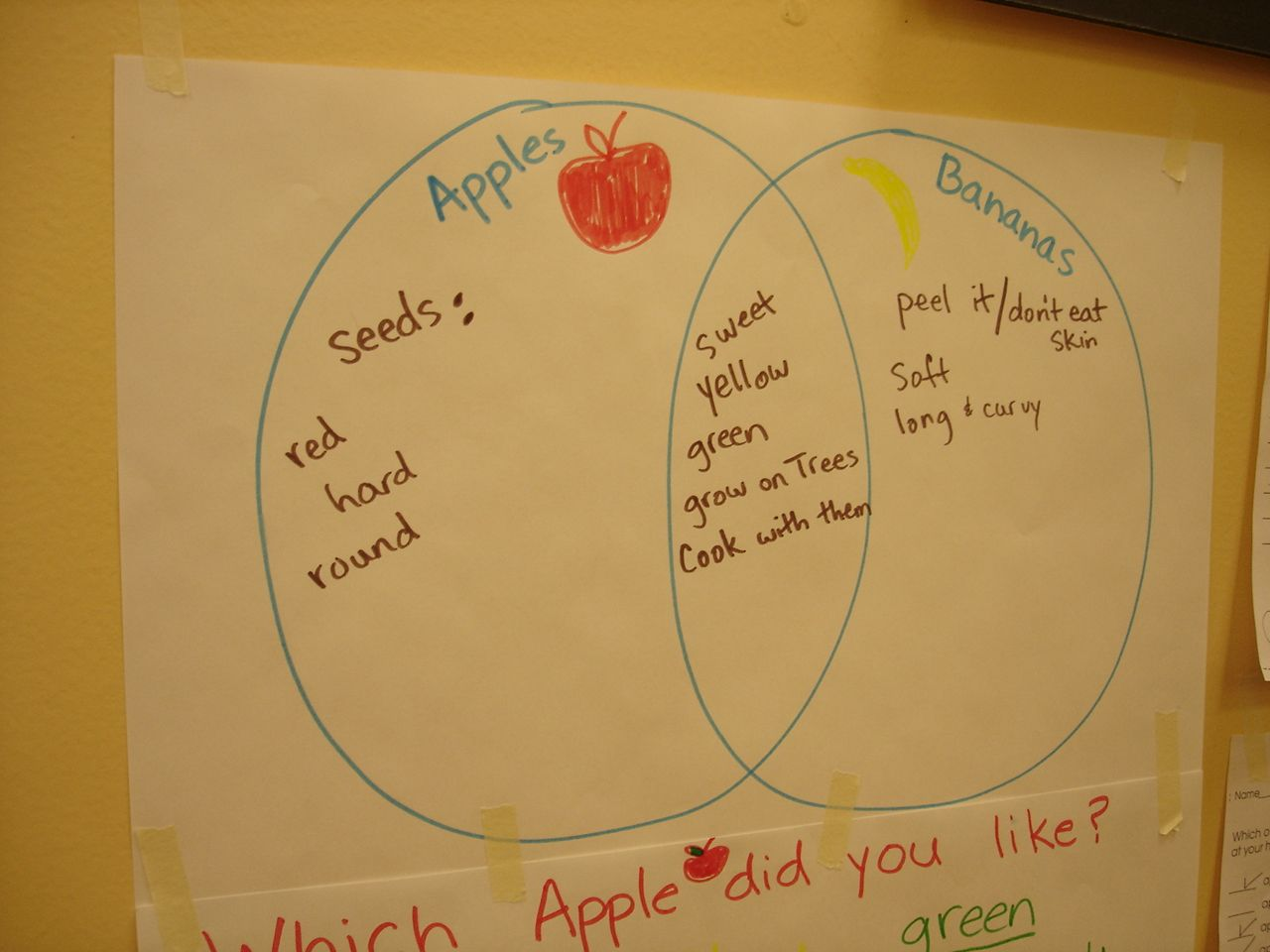 Venn Diagram Comparing Apples And Bananas Great Math Activity